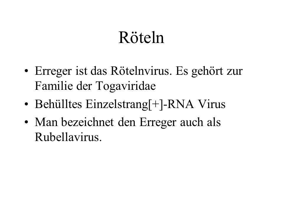 Röteln Erreger ist das Rötelnvirus. Es gehört zur Familie der Togaviridae. Behülltes Einzelstrang[+]-RNA Virus.